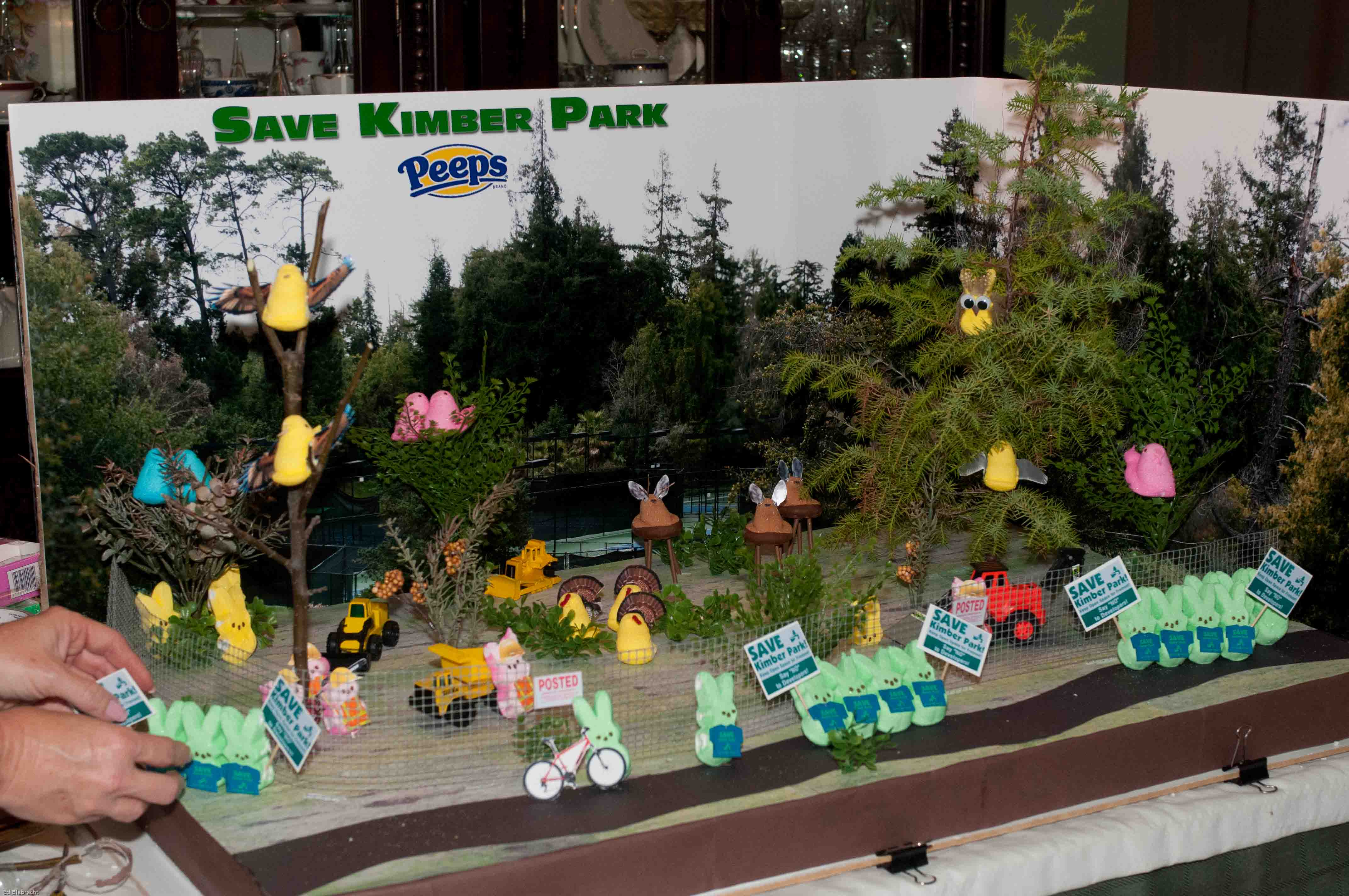 Park Diorama Images - Reverse Search